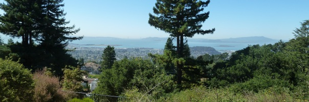 View of San Francisco Bay from Berkeley Hills