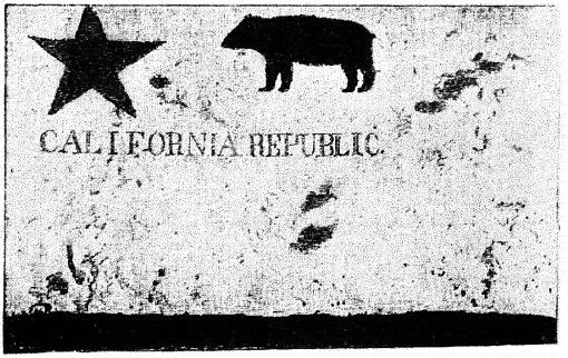 First California Bear Flag