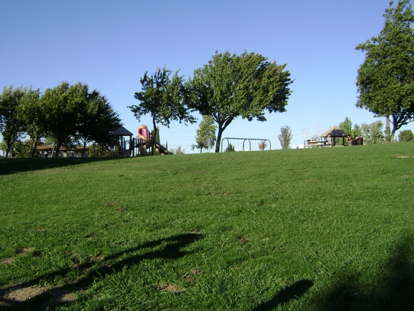 Typical East Bay park