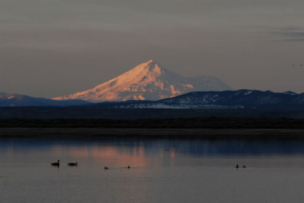 Mt. Shasta and Tule Lake