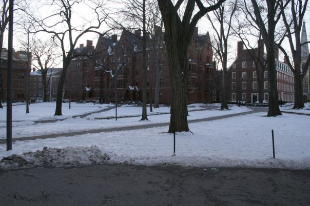 Harvard Yard, the center of the campus
