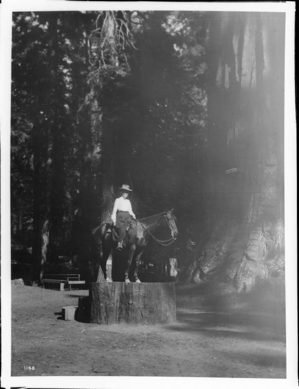 Woman on Horseback, Yosemite c. 1900 (Credit: California Historical Society)